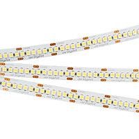 Светодиодная лента RT-A240-10mm 24V Warm2400 (19.2 W/m, IP20, 3528, 5m) (arlight, Открытый)