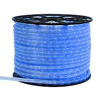 Дюралайт ARD-REG-LIVE Blue (220V, 24 LED/m, 100m) (Ardecoled, Закрытый)