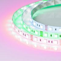 Светодиодная лента RT2-5050-60-12V RGB (300 LED) (NormaLED, 13 Вт/м, IP20)