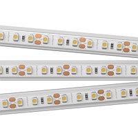 Светодиодная лента RTW2-5000PS 12V Day4000 2x (3528, 600 LED, LUX) (arlight, 9.6 Вт/м, IP67)