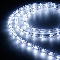 Образец Дюралайт ARD-REG-STD Cool (220V, 36 LED/m, 2m) (Ardecoled, Закрытый)