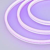 Образец Гибкий неон GALAXY-1608-5000CFS-2835-100 12V Purple 0.5M (16x8mm, 12W, IP67) (arlight, 12 Вт/м, IP67)