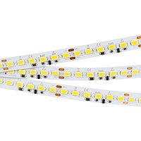 Светодиодная лента IC2-5000 24V Cool 8K 4xH (5630, 600 LED, LUX) (arlight, 25 Вт/м, IP20)