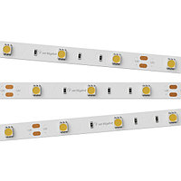 Светодиодная лента RT 2-5000 12V White6000 (5060, 150 LED, LUX) (arlight, 7.2 Вт/м, IP20)
