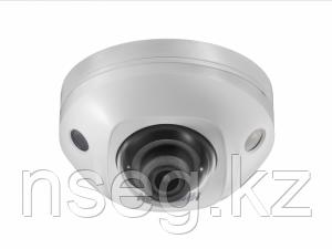 Видеокамера IP Hikvision DS-2CD2543G0-IWS