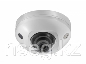 Видеокамера IP Hikvision DS-2CD2543G0-IS