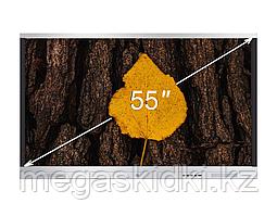 Интерактивная панель DIGITOUCH DTIP55SM10A60ALG