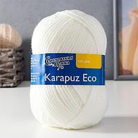 Пряжа Karapuz Eco (КарапузЭко) 90% акрил, 10% капрон 125м/50гр белый (179)