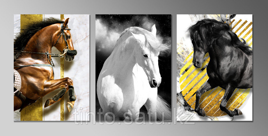 "Постеры триптих ""Лошади"""
