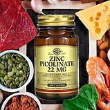 Solgar Пиколинат Цинка 22 мг.,100 таблеток, фото 2