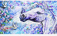 Картины по номерам 40*50 производства Казахстан