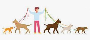 Товары для прогулки с животными