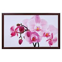"Картина ""Орхидея"" 67х107 см рамка микс"