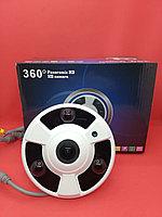 Камера Рыбый глаз BD-303
