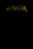 Электрокаменка Очаг ЭНУ-8и. С испарителем. (8,0 кВт до 12 м3). Печи Пермь., фото 7