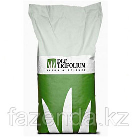 Семена газона Робустика 1кг
