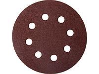 Круг шлифовальный на липучке ЗУБР 35560-115-100, МАСТЕР, универсальный, из абразивной бумаги на велкро основе,
