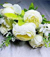 Цветы пионы 9 голов и три бутона белые