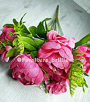 Цветы пион