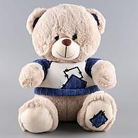 """Plush: Мягкая игрушка """"Медвежонок в голубой футболке"""", 30 см"""