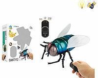 Innovation: Радиоуправляемая игрушка Муха на пульте управления
