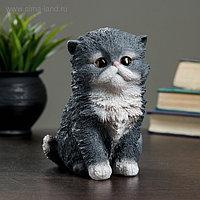 "Фигура ""Котенок персидский"" 13х11х16см"