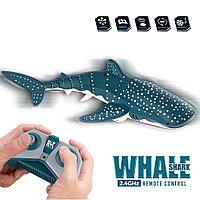 Радиоуправляемая Китовая Акула
