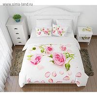 КПБ «Лепестки роз» евро, размер 220 × 240 см, 200 × 220 см, 50 × 70 см - 2 шт.