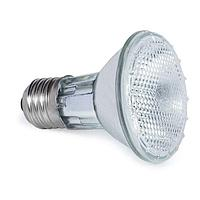 Лампа для террариума галогеновая 2050PAR 50 Вт