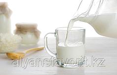Минизавод для переработки молока ИПКС-0100 «Фермер-Профи»