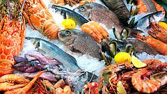 Рыбная промышленность: оборудование для переработки рыбы и производства рыбных продуктов.