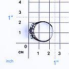 Кольцо Teosa серебро с родием, сапфир топаз, дорожка 0642-R-SP-T, фото 2