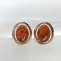 Серьги Красная Пресня серебро с позолотой, янтарь, овал 33310015