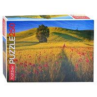 Puzzle 250 Hatber 40*28cm Лирика природы