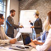 Фасилитация бизнес-моделей (Canvas Business model)