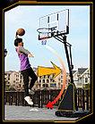 Мобильная баскетбольная стойка FT-S024, фото 5