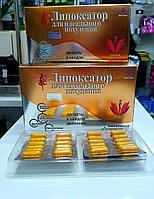 Капсулы для похудения Липоксатор для идеального похудения 36 капсул 800 мг.
