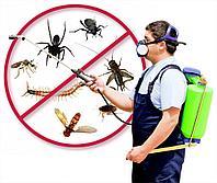 Уничтожение насекомых всех видов