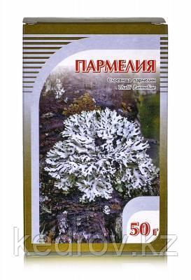 Пармелия, слоевища 50 гр.