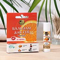 Бальзам для губ «Золотая борть» натуральный, от герпеса, апельсин, 5 г