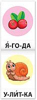 Тренажёры по чтению набор «Составляем слова» 6 шт по 20 стр., фото 1