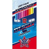 Карандаши 12 цветов Hatber VK Хоккей