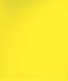 Осиный - желтый  бумажный фон в рулоне 11м Х 2,72м от Kelly Photo США 50