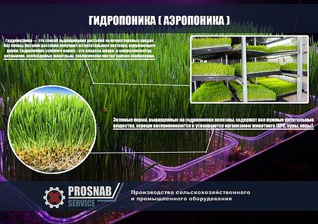 Гидропоника (Аэропоника) - МГУ - мобильная гидропонная установка, производительностью 150, 200 кг, фото 2