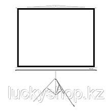 """Экран на треноге Deluxe DLS-T203x154W (80""""х60""""), Ø - 100"""", Раб. поверхность 203х154 см., 4:3"""