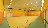Спортивное покрытие для универсальных залов