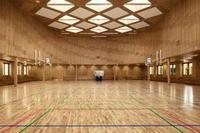 Cпортивный паркет для спортзалов или танцевального зала