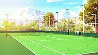 Профессиональное покрытие для теннисного корта