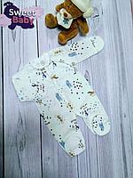Слип теплый футер Claris лошадки-Мишки (голубые) р.56
