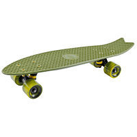 Penny board (пенни борд) Tech Team Fishboard 23 TLS-406 dark green